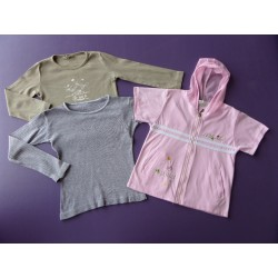 Lot t.shirts/veste fille 4-5 ans